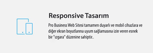 06 Responsive WordPress Theme