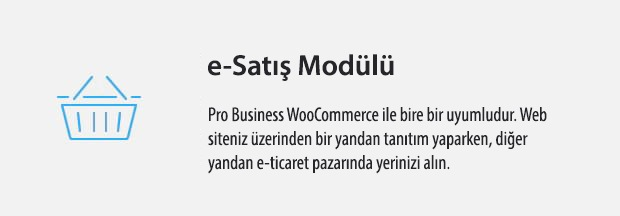 08 WooCommerce Compatible