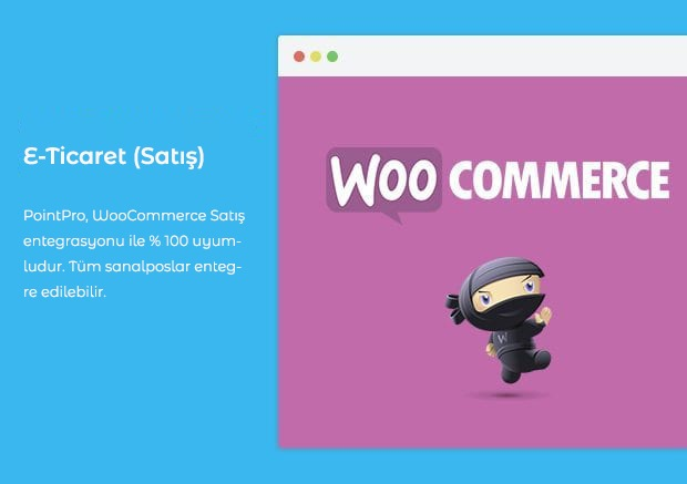 11 woocommerce support