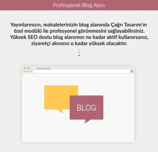 17 blog section