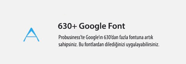 19 All Google Fonts Included
